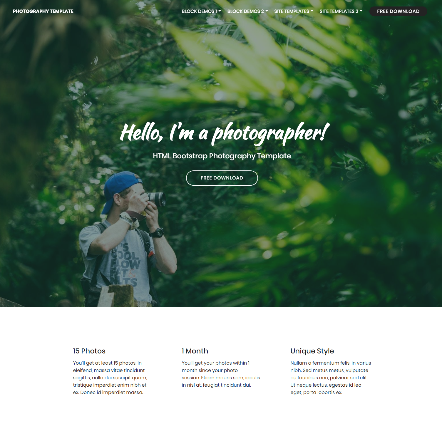 Responsive Bootstrap Photography Templates