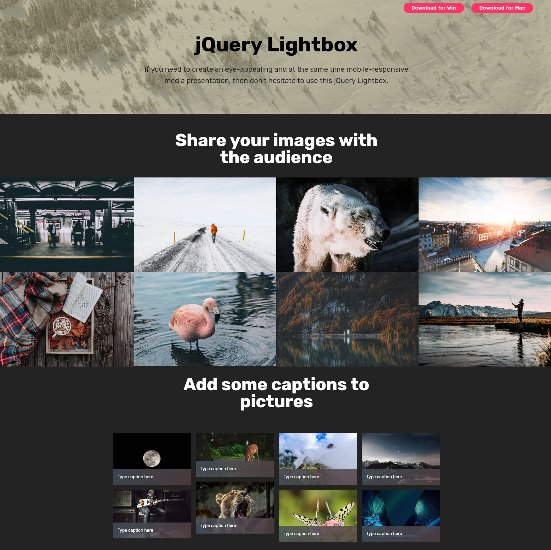 Free Bootstrap Image Gallery