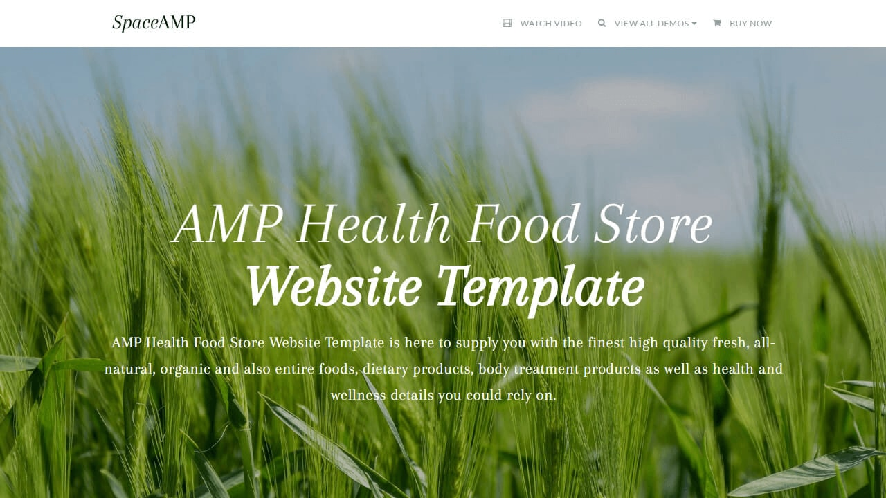 AMP Health Food Website Template