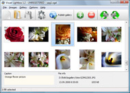 onclick pop up window in javascript Picasa Album Web Le Caire