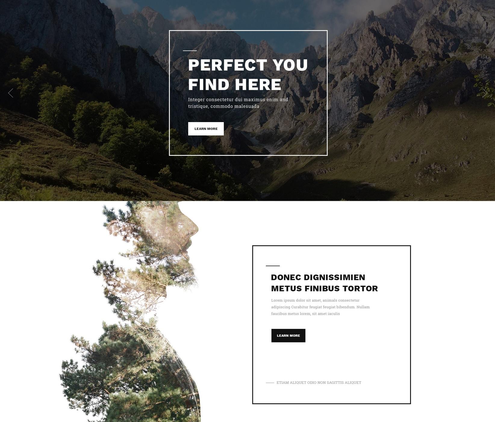 HTML5 Bootstrap Portal Theme