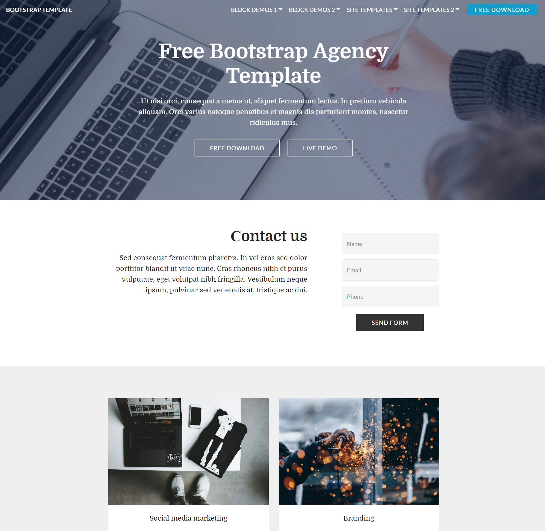 Free Bootstrap  Agency Templates