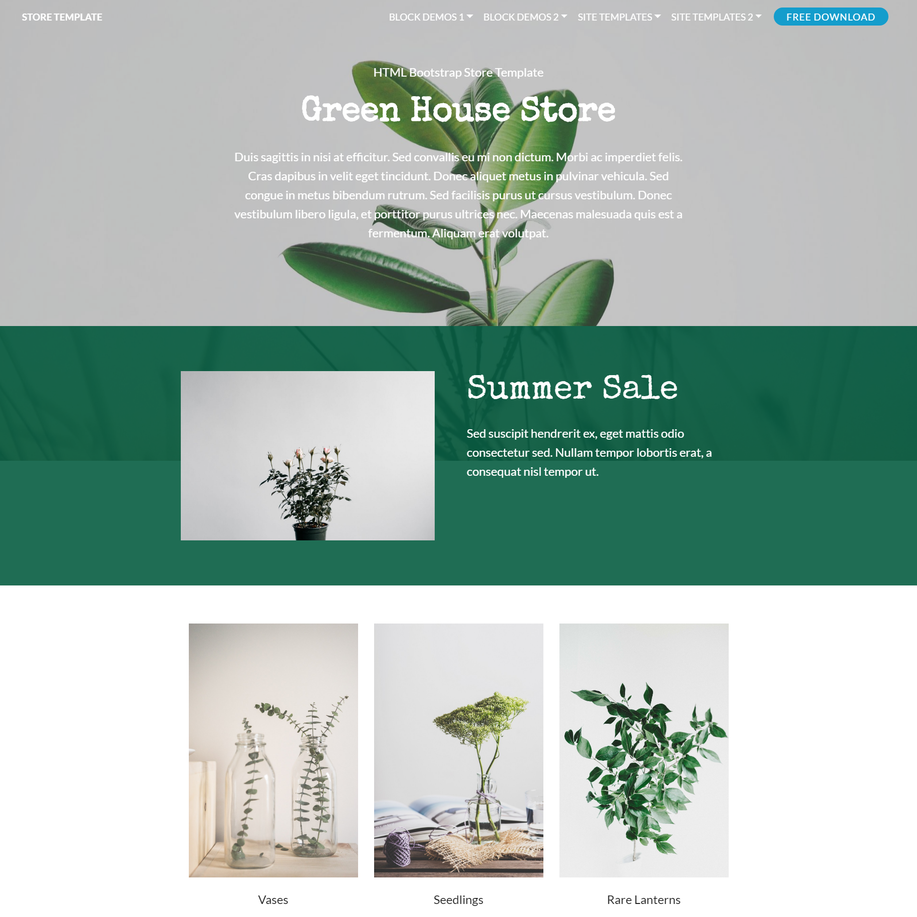 HTML5 Bootstrap Store Themes